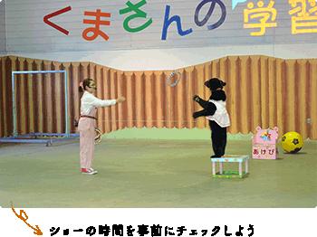 クマさんのショー