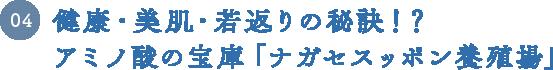 04 健康・美肌・若返りの秘訣!?アミノ酸の宝庫「ナガセスッポン養殖場」