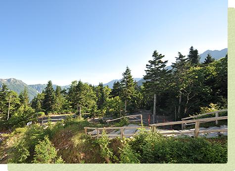 Take a walk through Sengokuenchi Nature Park together♪