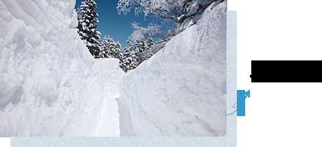 冬には雪の回廊が出現♪