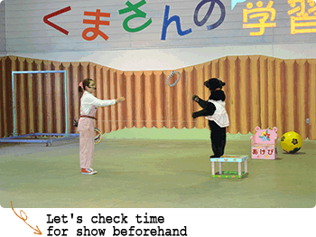 Show of bear