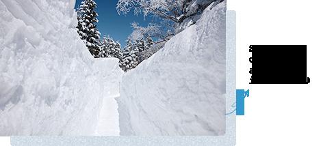 Snowy corridor appears in winter♪