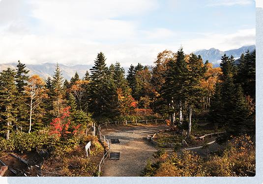 가을의 모습