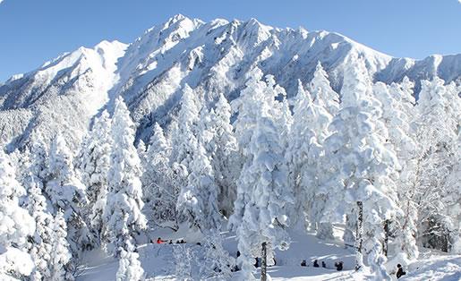 雪景色から新緑に移り変わる山々