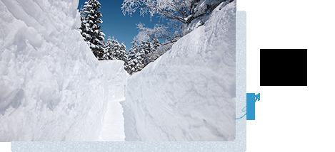 冬天,雪的回廊出现♪