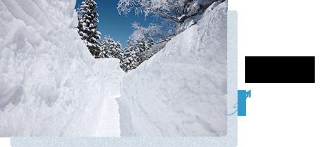 冬天,雪的回廊出現♪