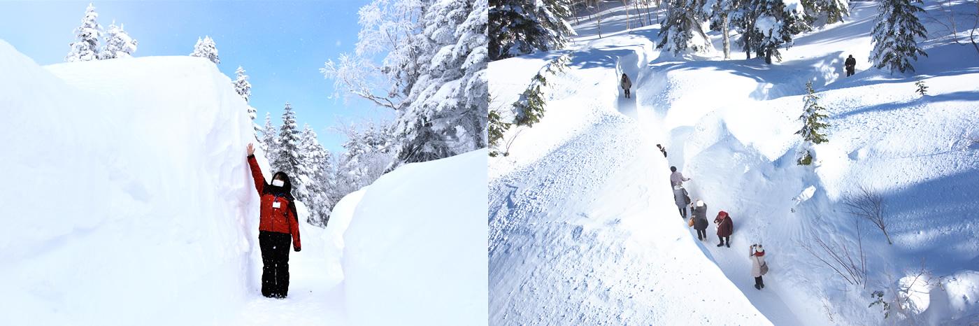 雪の回廊写真01