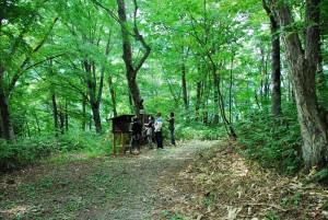 鍋平高原自然散策路2